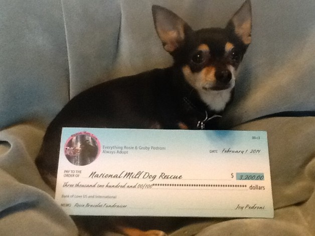 $3,200 for the National Mill Dog Rescue organization
