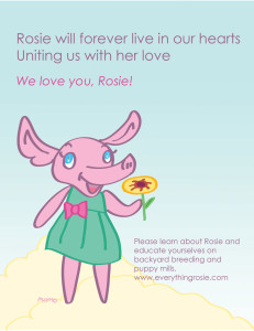 Everything Rosie - Forever in Our Hearts