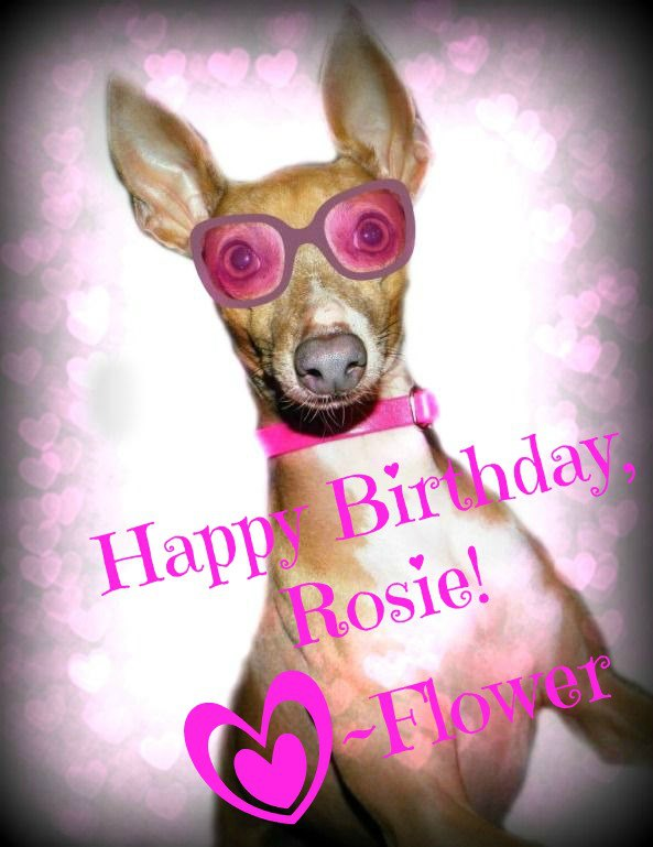 happy birthday rosie