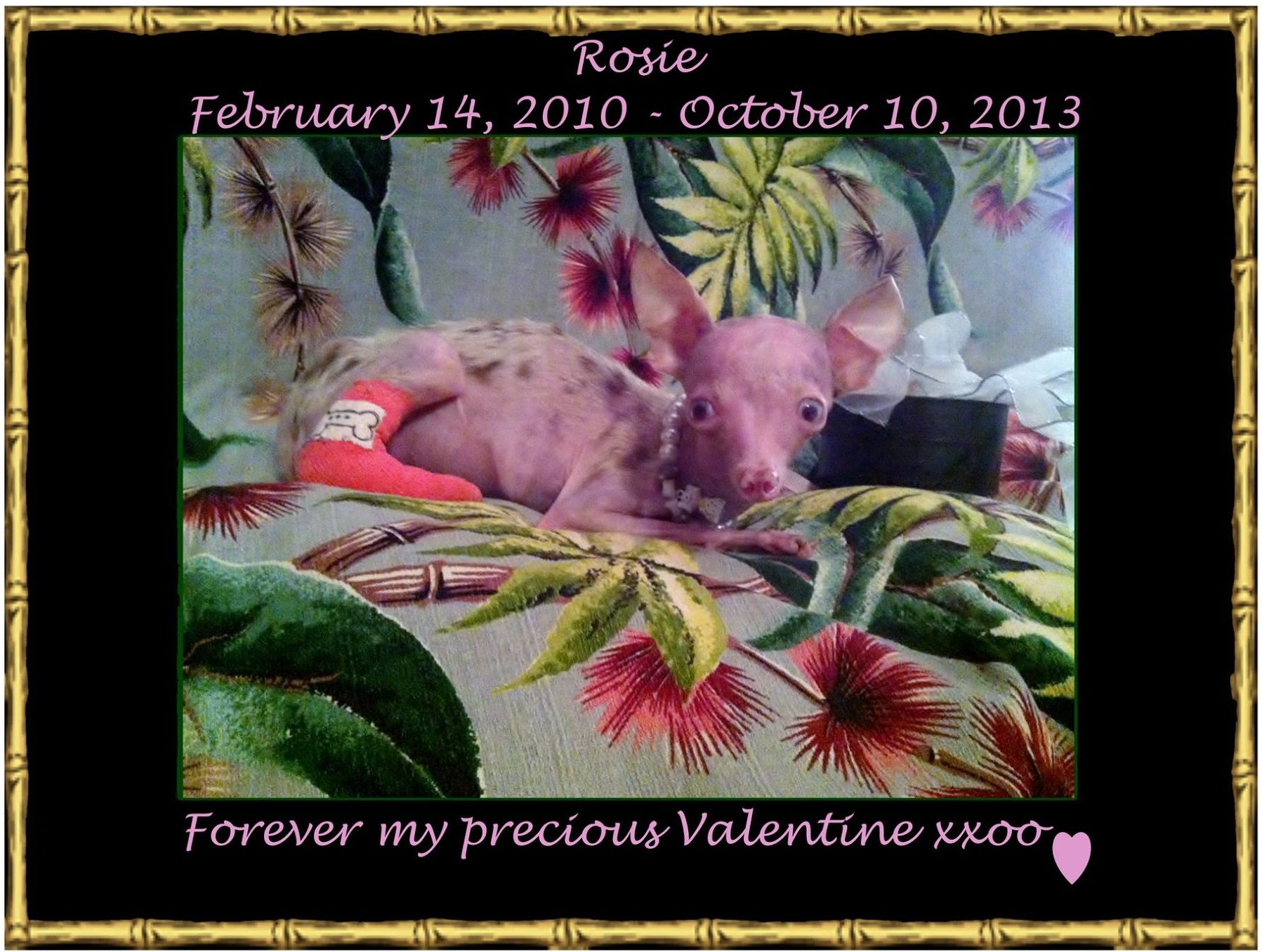 Happy Birthday Rosie - Forever my precious Valentine