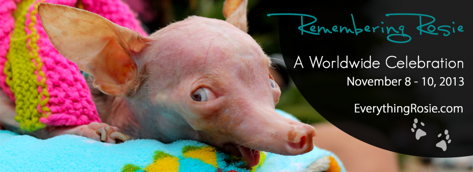 Remembering Everything Rosie: A Worldwide Celebration